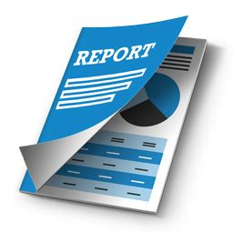 How to write report of evs project